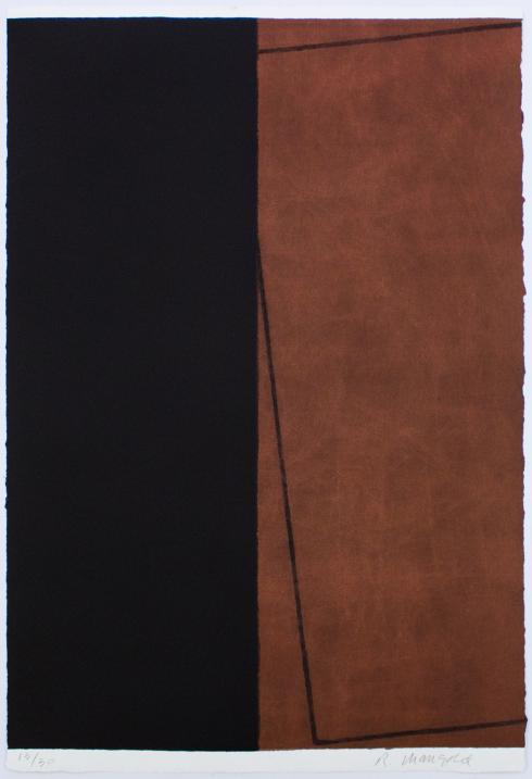 Robert Mangold, Varied Figure Zone (1-part), 2000