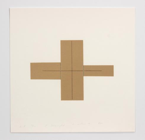 Robert Mangold, + Within +, 1981